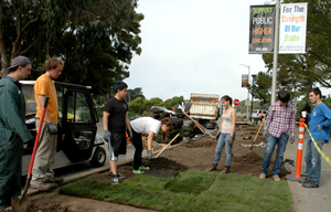 A photo of group of students unrolling green sod onto the ground